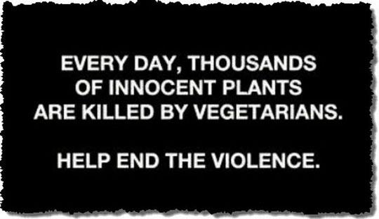 innocent plants killed by vegetarians