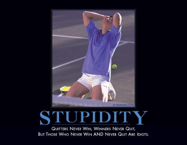 stupiditydemotivator