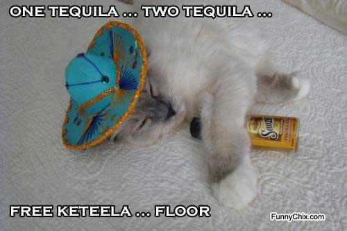 1 tequila 2 tequila