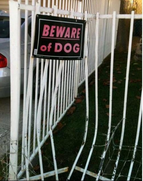 beware dog broken fence