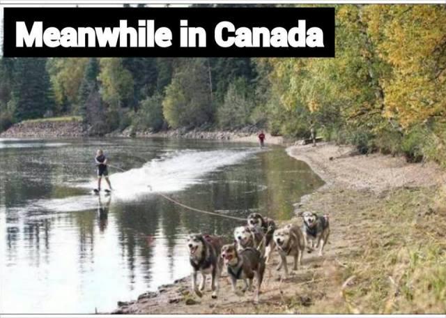 Canada 2 husky water ski