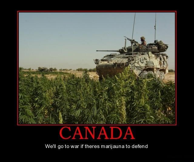 canada war marijuana