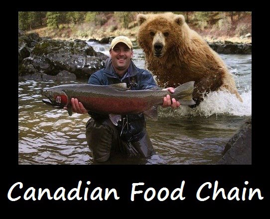 Canadian food chain