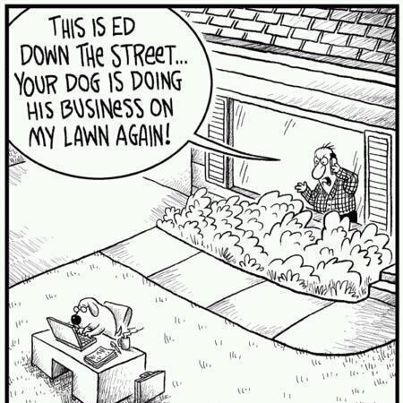 dog business lawn