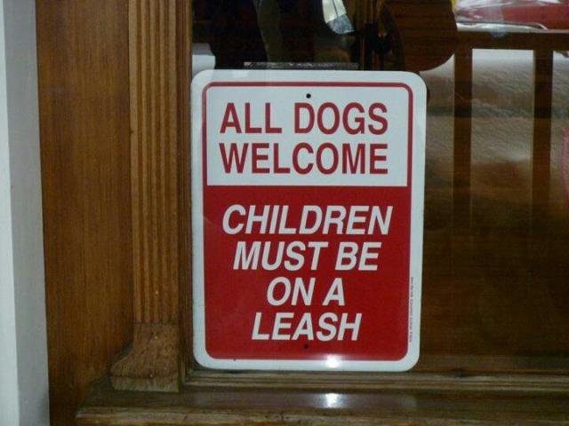 dogs welcome children leash
