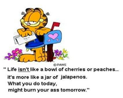 Garfield life not a bowl of cherries