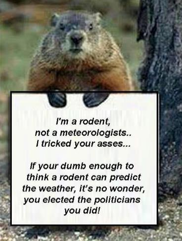 groundhog not weatherman