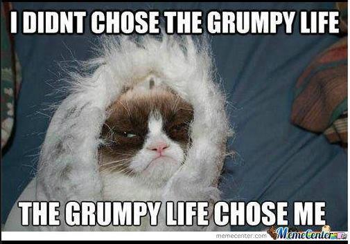 grumpy life chose me