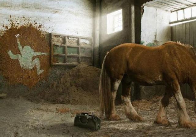 horse shit vet