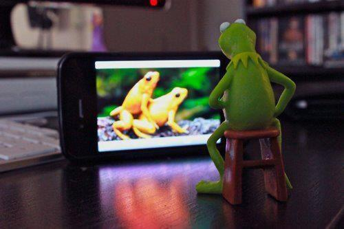 Kermit watches porn