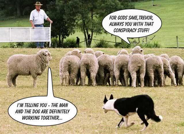 man dog sheep conspiracy