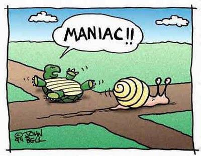maniac turtle snail