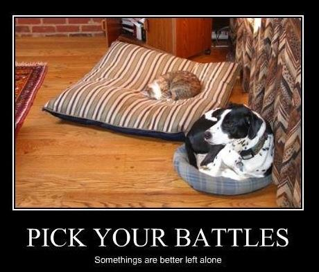 pick your battle