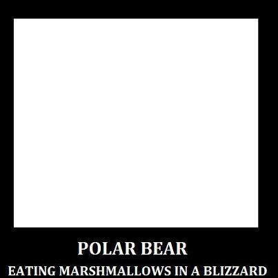 polar bear marshmallows blizzard
