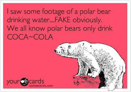 polar bears drink Coke