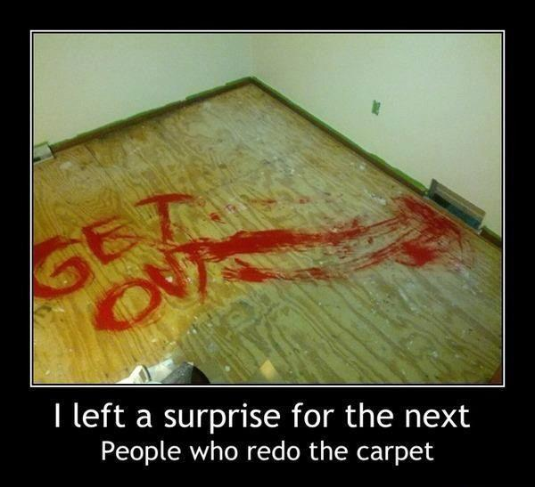 surprise next carpet