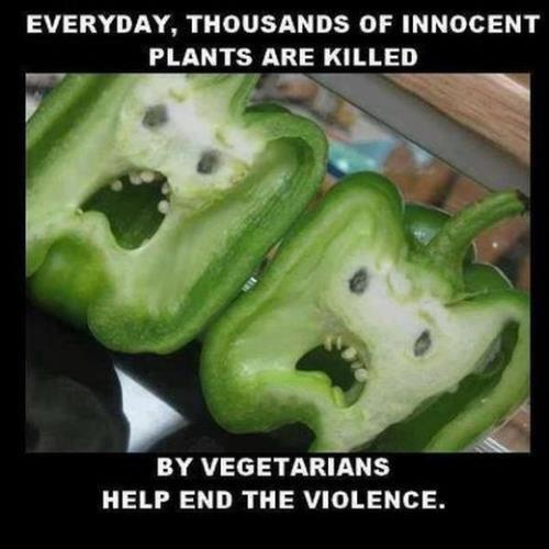 vegetarians kill plants