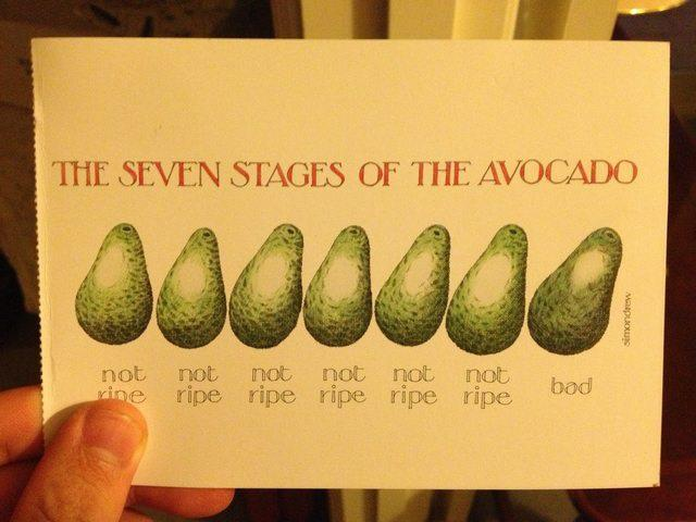 Avocado 7 stages X