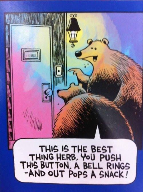 bear doorbell snack FB X