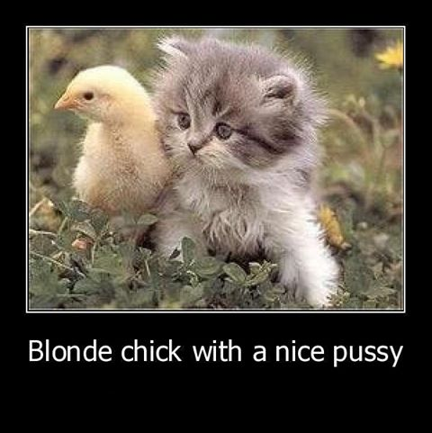 blond chick nice pussy X