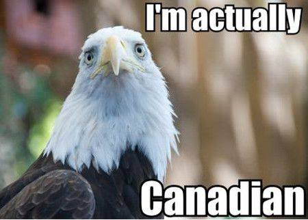 eagle Canadian X