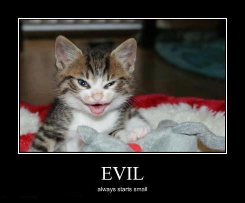 evil starts small X