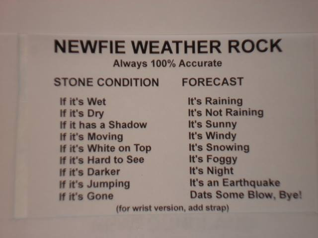 Newfie weather rock X