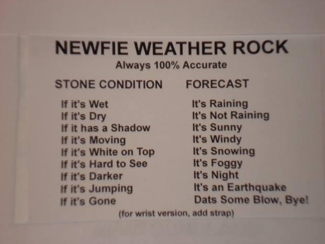 Newfie weather rock X