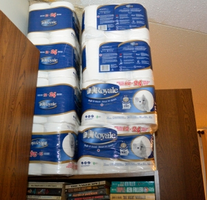 _DSC0036 toilet paper