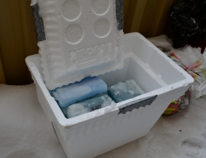 _DSC0041 styrofoam cooler ice packs
