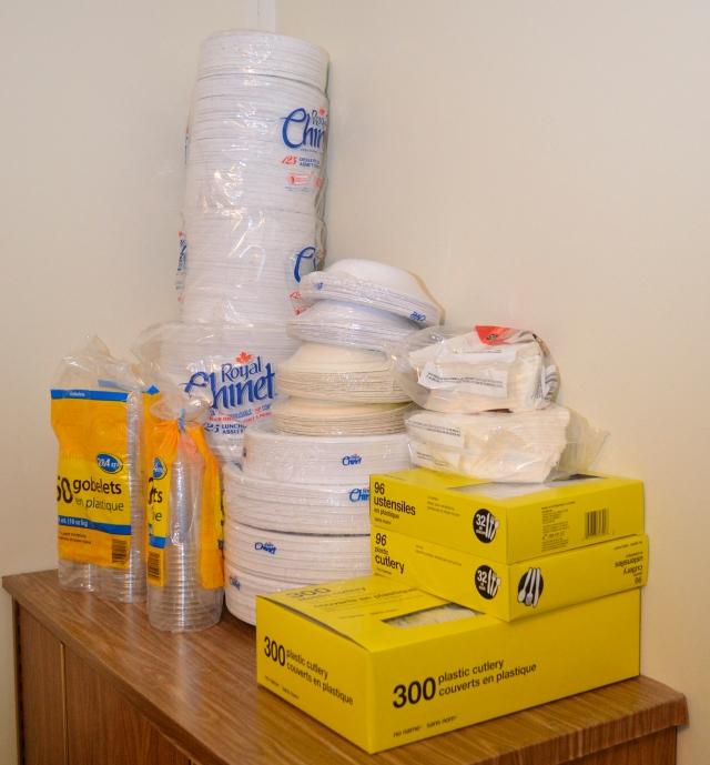 _DSC0049 paper plates