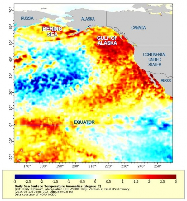 West coast water temp 2014